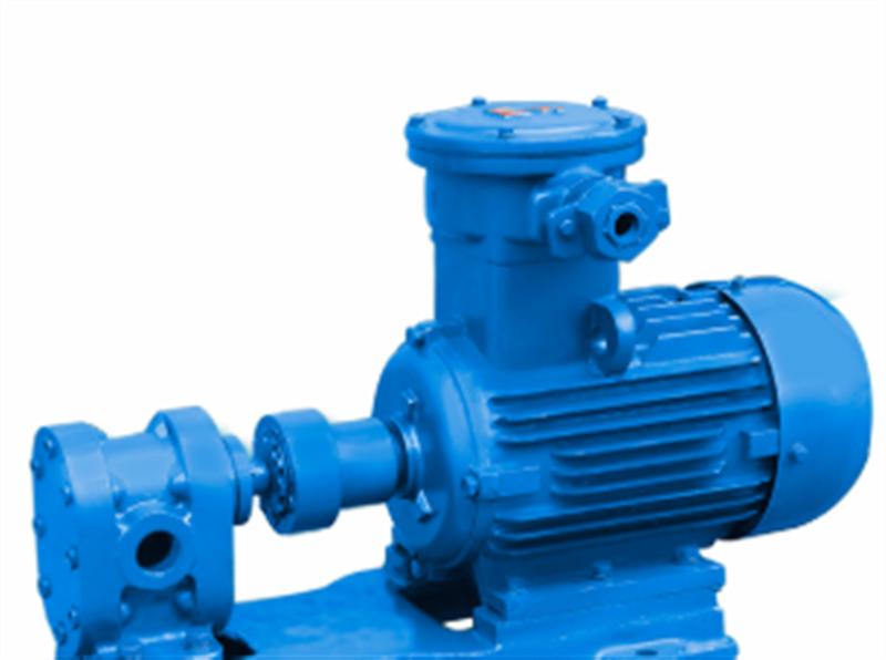 Oil pump gear processing case
